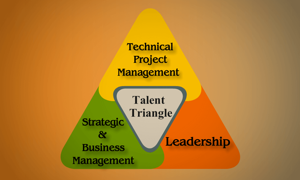 PMI Talent Triangle c