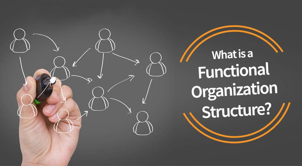 What Is A Functional Organization Structure Pm Study Circle